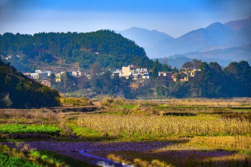 全国农村有7000万套闲置房屋 农村居民点空闲和闲置地面积达3000万亩