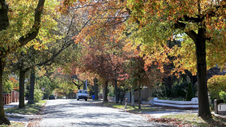 在墨尔本最昂贵的郊区 租金有所下降 但价格最低的郊区租金却有所上升
