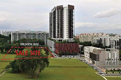 丰隆以4.6亿美元收购Hillview Rise网站