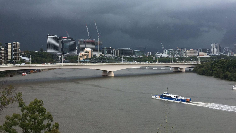 昆士兰居民警告说 在风暴季节树木掉落的风险异常高