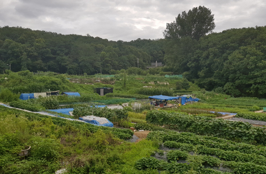 韩国在说明会上也将积极推进宅地开发