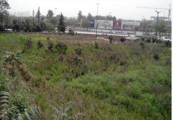 黄埔大道棠下村附近的大片工业用地和仓储用地将变成商业用地