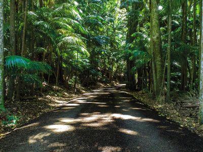 黄金海岸的侏罗纪公园般的雨林休闲胜地迎合了市场