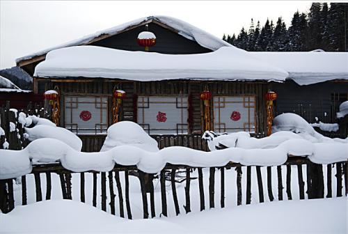 目前市场上最好的雪屋是哪个