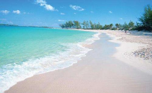 在澳大利亚最好的海滩购买物业需要多少钱?