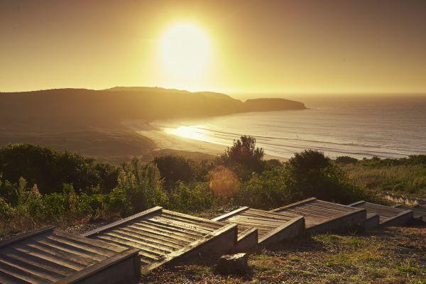 壳牌湾:悉尼南部田园诗般的海滨郊区