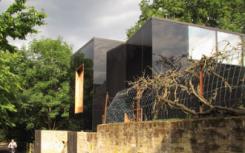 黑色玻璃幕墙映照了IanMcChesney在伦敦南部住宅的风光