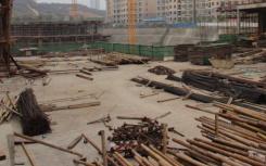 在德里下令放松建筑活动两天后 荒芜的建筑工地就开始恢复生机