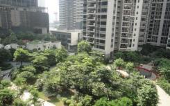 这三个城市上半年的房价表现涨幅均较为明显