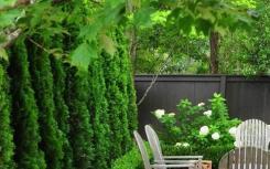 一楼带院子的话 千万不要做大面积水景