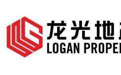 龙光集团实现权益合约销售额约463.5亿元 较去年同期增长12.1%