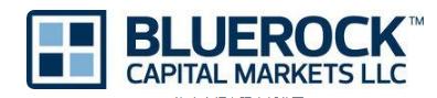 Bluerock总收入+房地产基金继续录得资本流入和净资产值增长的大幅增长