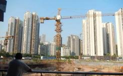 广东东莞村集体官网公示塘厦横塘社区城市更新项目前期服务商中标公告
