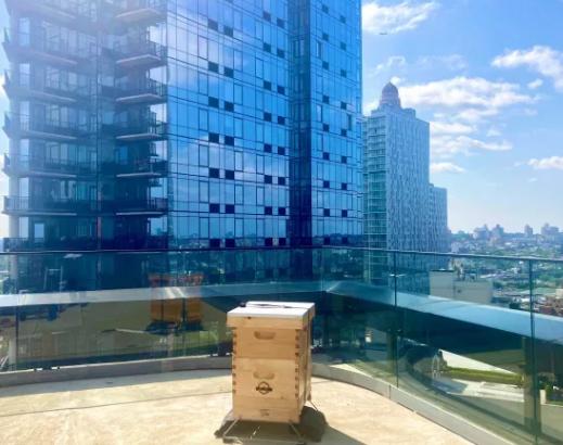 高盛通过蜂巢计划推动房地产可持续发展